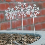snowflake pics used at wedding